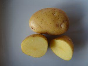 aufgeschnittene Kartoffel